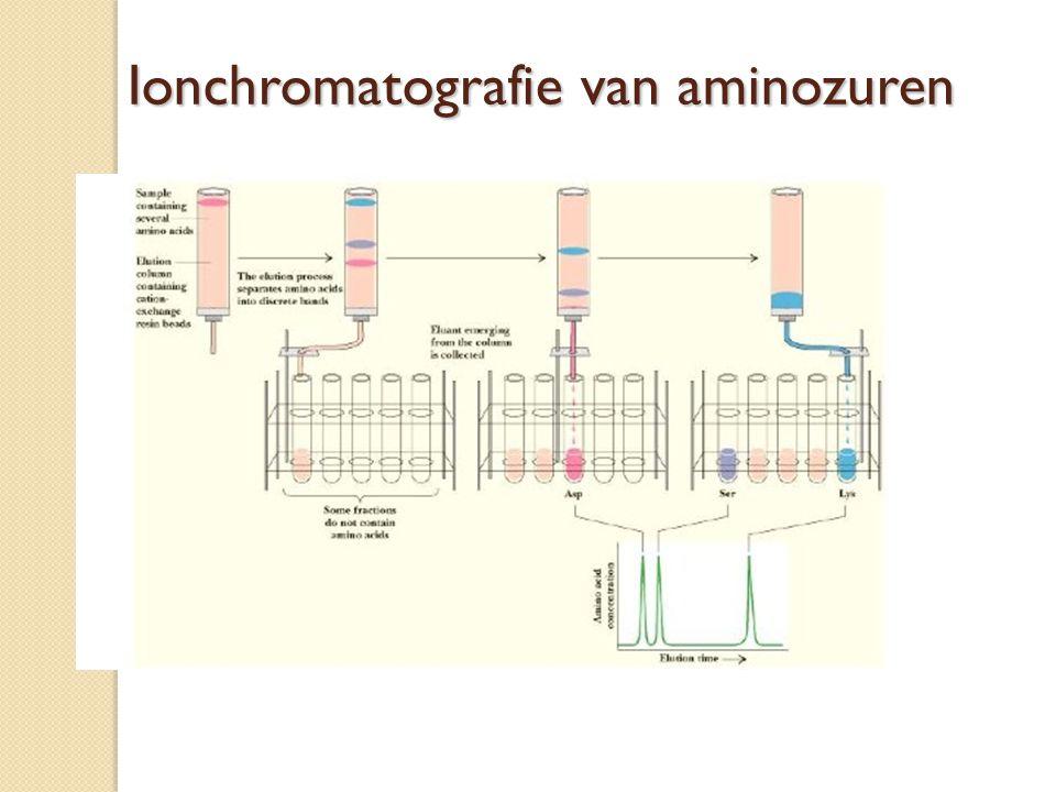 Ionchromatografie van aminozuren