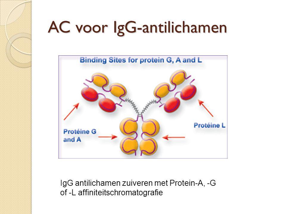 AC voor IgG-antilichamen IgG antilichamen zuiveren met Protein-A, -G of -L affiniteitschromatografie