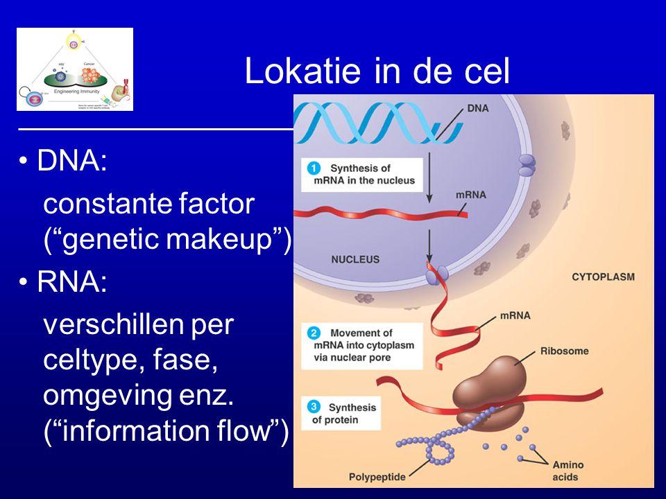 """Lokatie in de cel DNA: constante factor (""""genetic makeup"""") RNA: verschillen per celtype, fase, omgeving enz. (""""information flow"""")"""