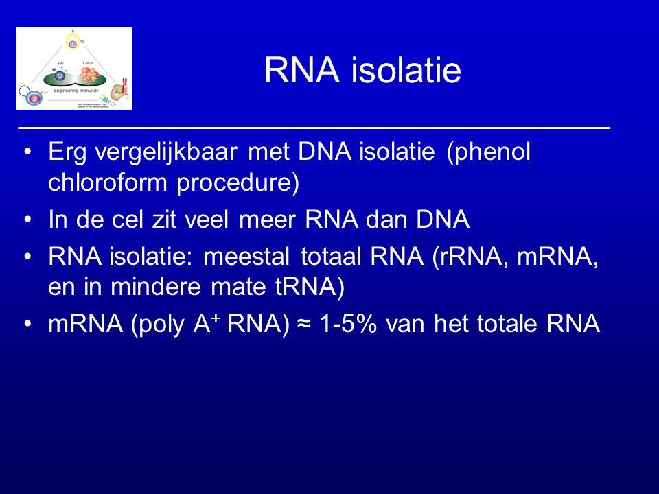 RNA isolatie Erg vergelijkbaar met DNA isolatie (phenol chloroform procedure) In de cel zit veel meer RNA dan DNA RNA isolatie: meestal totaal RNA (rR