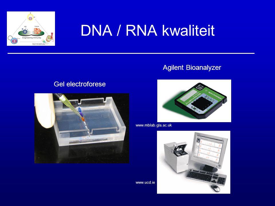 DNA / RNA kwaliteit www.mblab.gla.ac.uk www.ucd.ie biotrek.rdrake.org/img/gallery/ 33electrophore Agilent Bioanalyzer Gel electroforese
