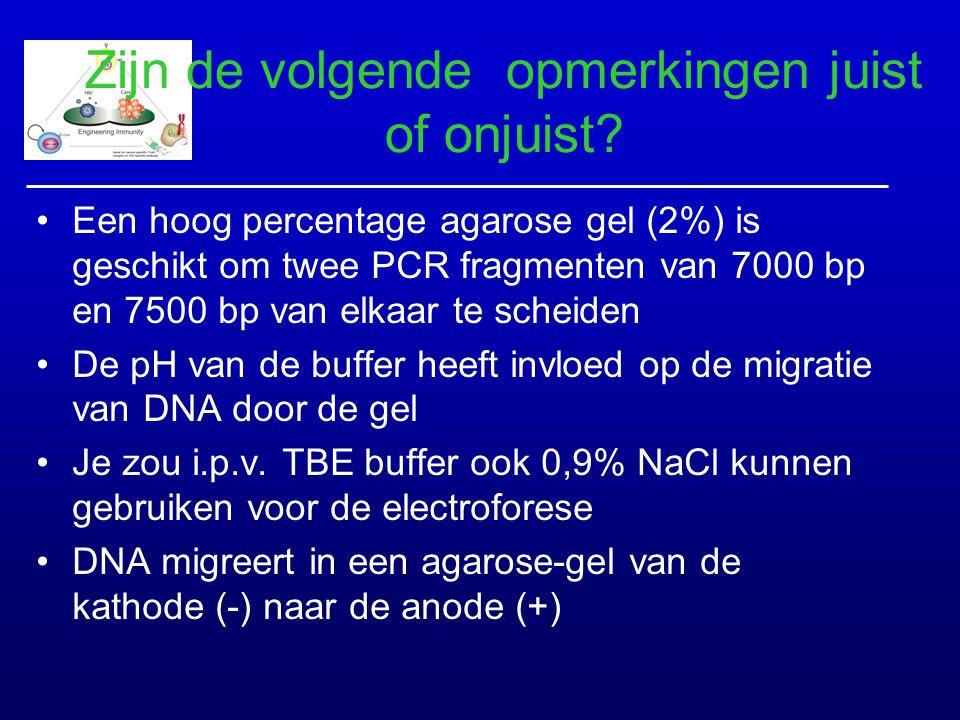 Zijn de volgende opmerkingen juist of onjuist? Een hoog percentage agarose gel (2%) is geschikt om twee PCR fragmenten van 7000 bp en 7500 bp van elka