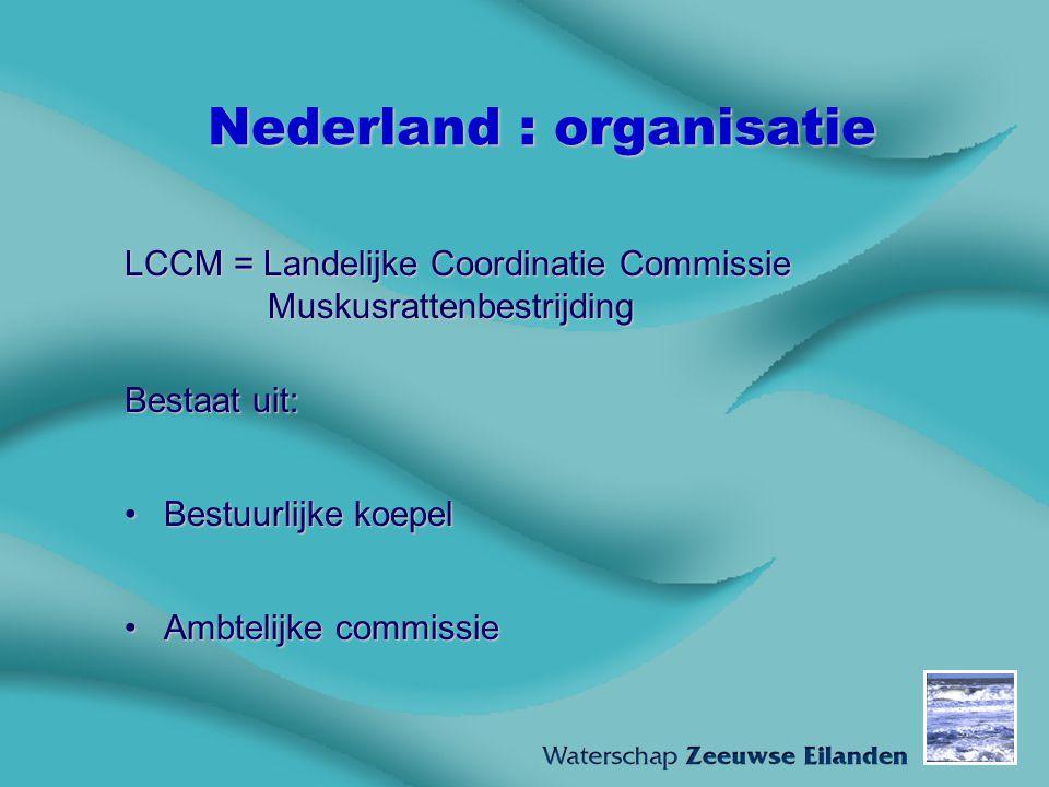 Nederland : organisatie LCCM = Landelijke Coordinatie Commissie Muskusrattenbestrijding Bestaat uit: Bestuurlijke koepelBestuurlijke koepel Ambtelijke