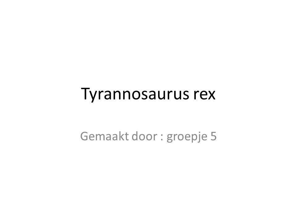 De tyrannosaurus rex is wel 12 meter lang 5,5 meter hoog en 6,5 ton.