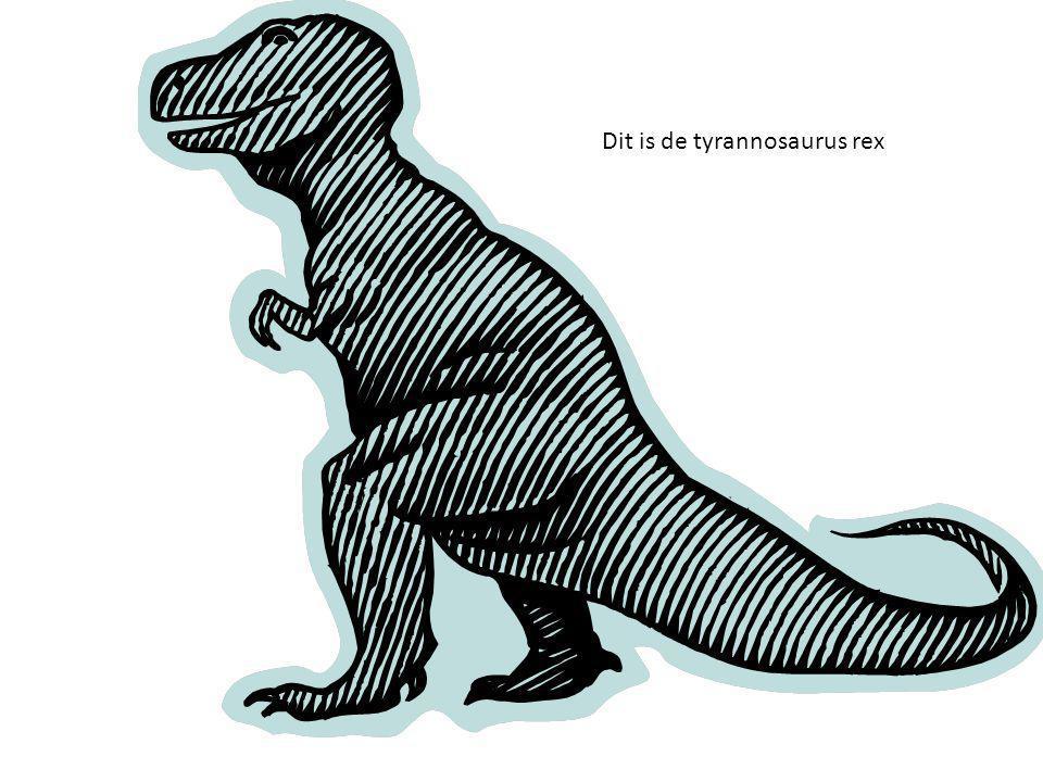 De quiz !!!!!!!!!!!!!!! Waar leefde de tyrannosaurus rex a.Krijt b.Java c.koek