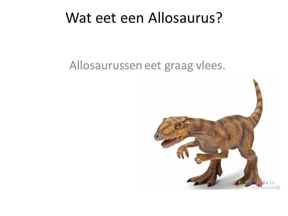 Wat eet een Allosaurus? Allosaurussen eet graag vlees.
