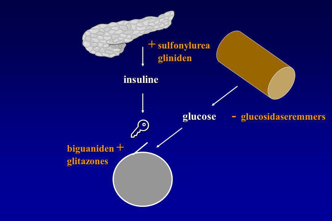  glucose insuline + sulfonylurea gliniden biguaniden + glitazones - glucosidaseremmers