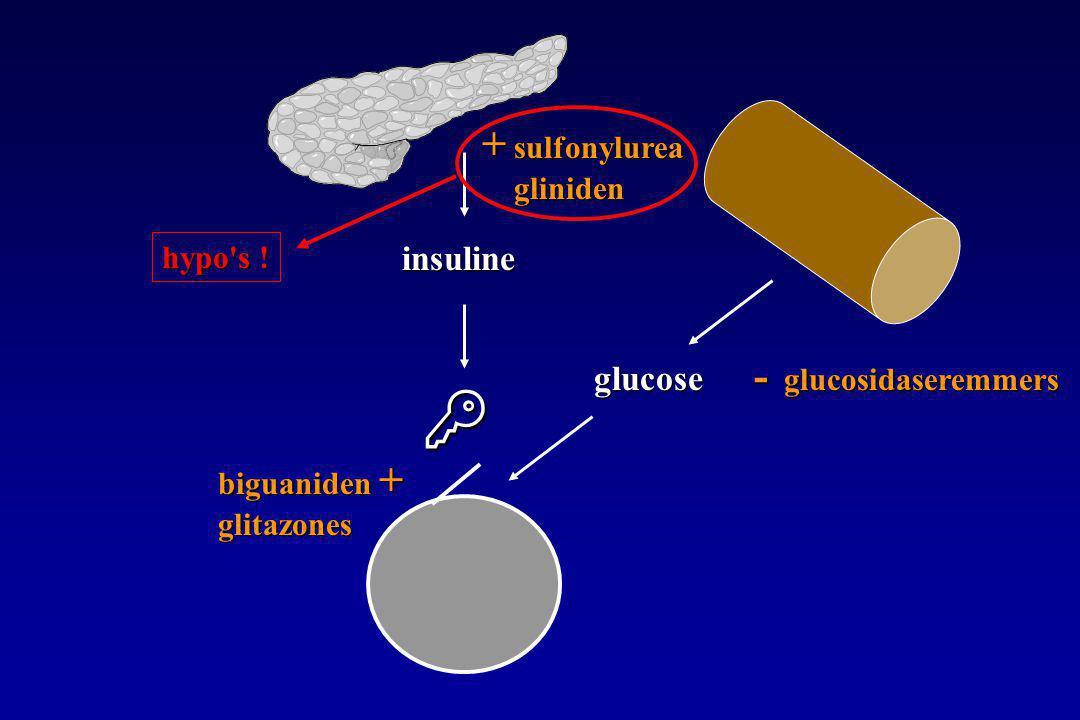  glucose insuline + sulfonylurea gliniden biguaniden + glitazones - glucosidaseremmers hypo s !
