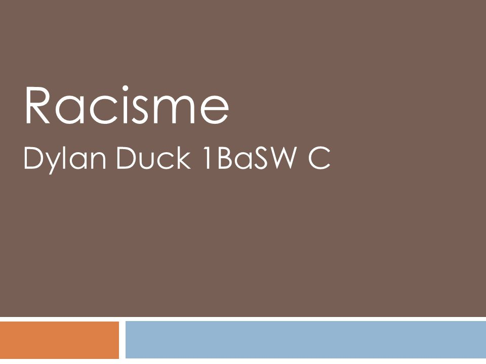 Racisme Dylan Duck 1BaSW C