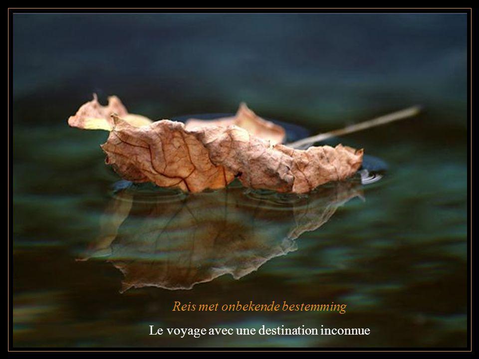 Herfst L automne