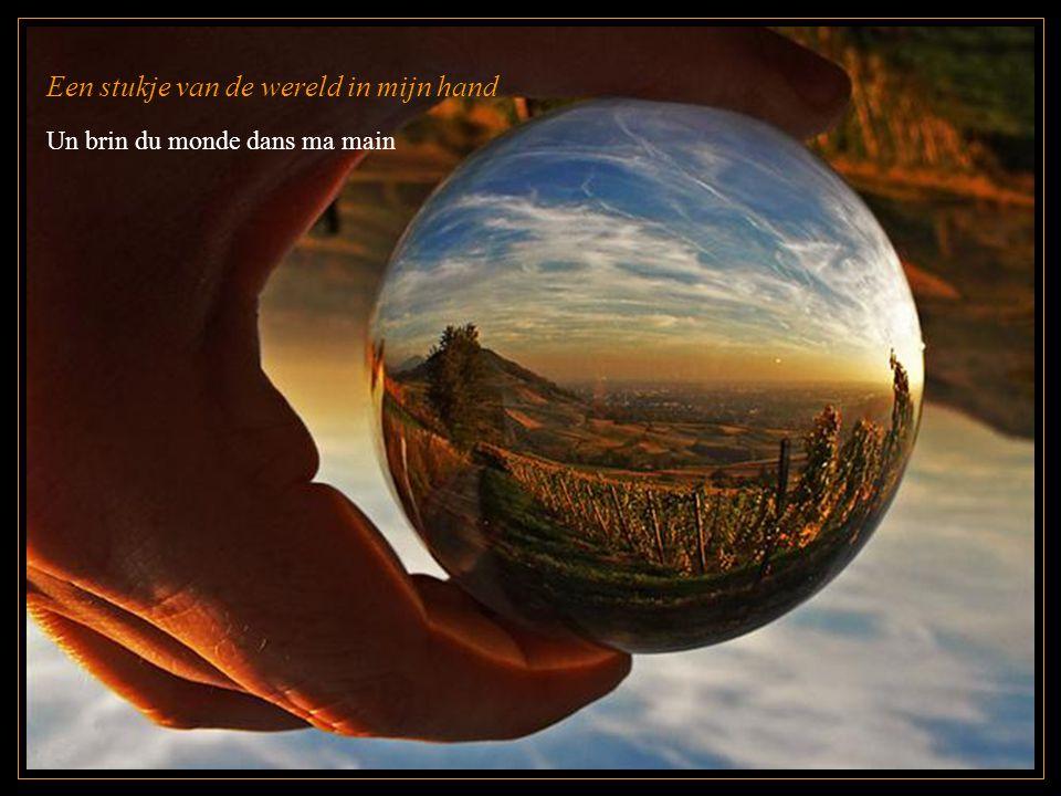 Een stukje van de wereld in mijn hand Un brin du monde dans ma main
