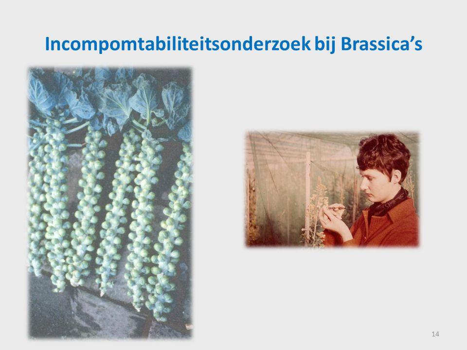 Incompomtabiliteitsonderzoek bij Brassica's 14