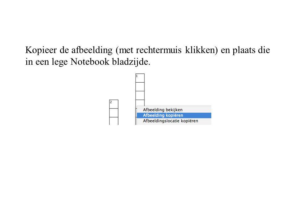 Kopieer de afbeelding (met rechtermuis klikken) en plaats die in een lege Notebook bladzijde.