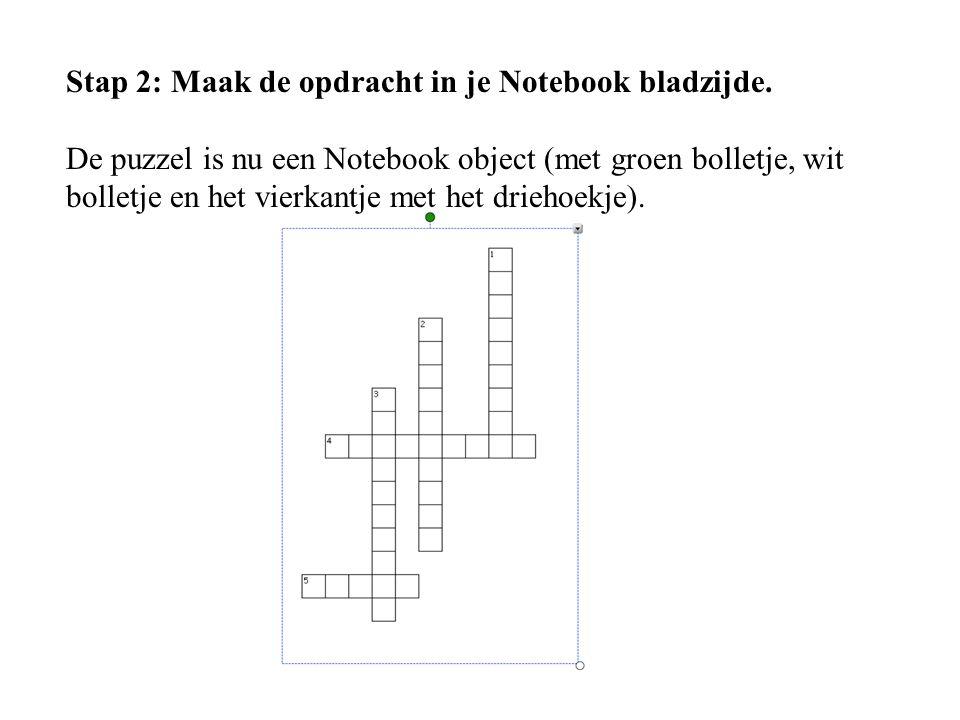 Stap 2: Maak de opdracht in je Notebook bladzijde. De puzzel is nu een Notebook object (met groen bolletje, wit bolletje en het vierkantje met het dri