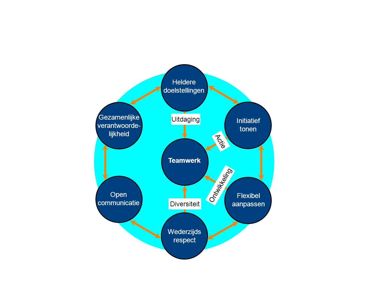 Teamwerk Heldere doelstellingen Wederzijds respect Initiatief tonen Flexibel aanpassen Gezamenlijke verantwoorde- lijkheid Open communicatie Uitdaging