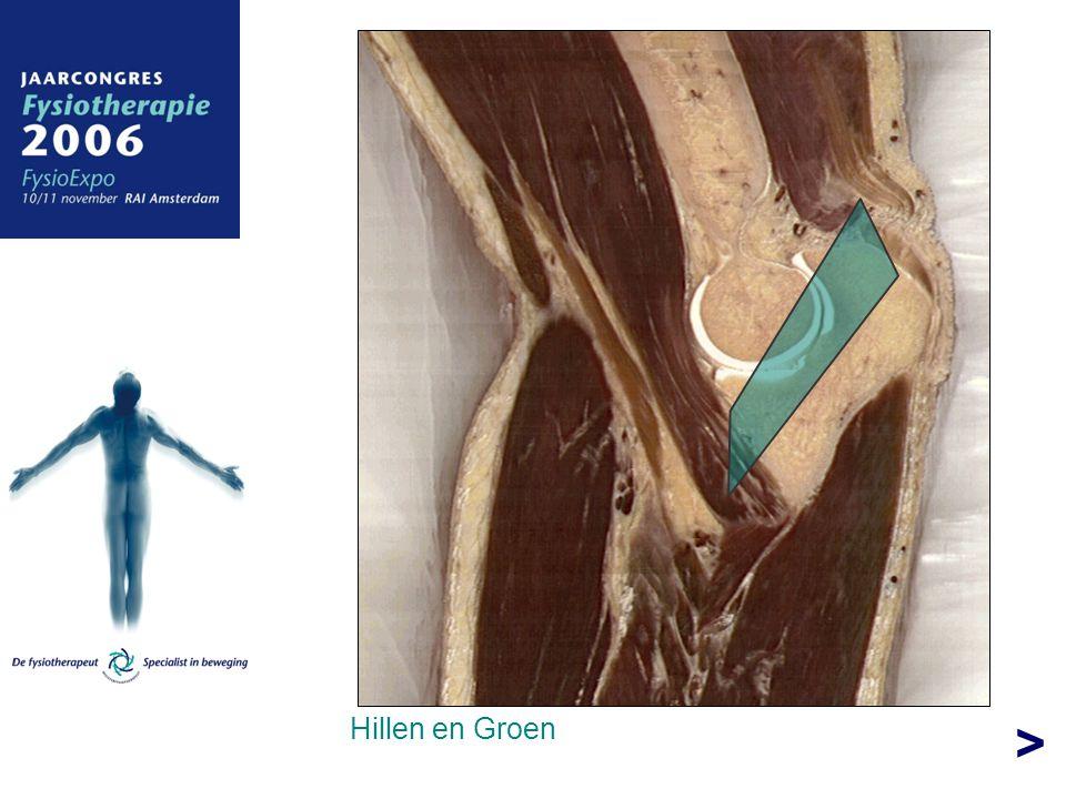 > Hillen en Groen