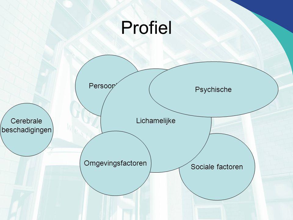 Profiel Persoonlijke Sociale factoren Lichamelijke Psychische Cerebrale beschadigingen Omgevingsfactoren