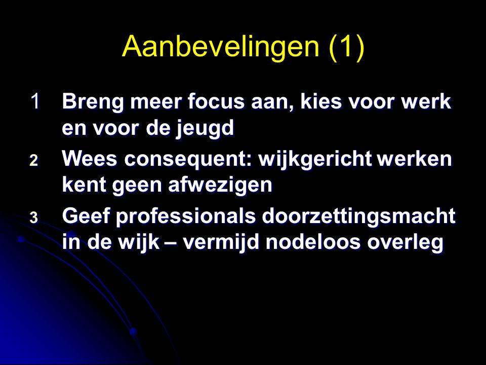 Aanbevelingen (1) 1 Breng meer focus aan, kies voor werk en voor de jeugd 2 Wees consequent: wijkgericht werken kent geen afwezigen 3 Geef professionals doorzettingsmacht in de wijk – vermijd nodeloos overleg