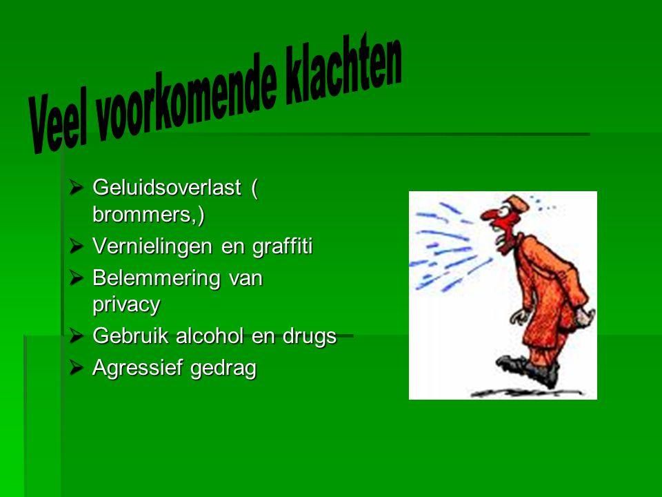  Geluidsoverlast ( brommers,)  Vernielingen en graffiti  Belemmering van privacy  Gebruik alcohol en drugs  Agressief gedrag