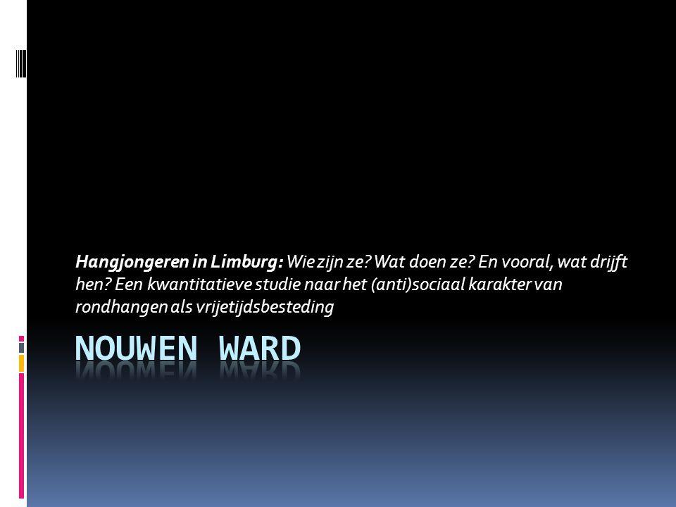 Hangjongeren in Limburg: Wie zijn ze. Wat doen ze.