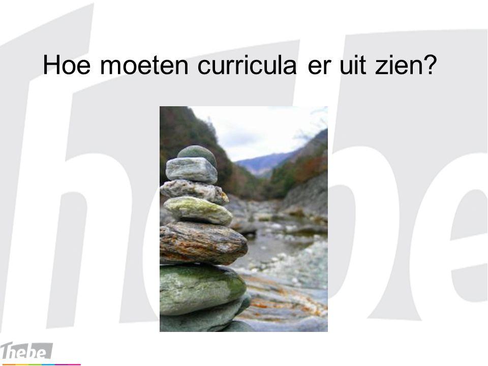 Hoe moeten curricula er uit zien