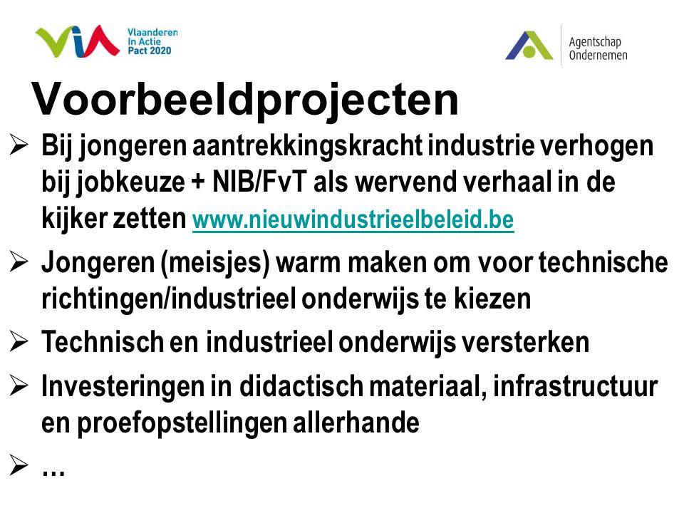 Voorbeeldprojecten  Bij jongeren aantrekkingskracht industrie verhogen bij jobkeuze + NIB/FvT als wervend verhaal in de kijker zetten www.nieuwindust