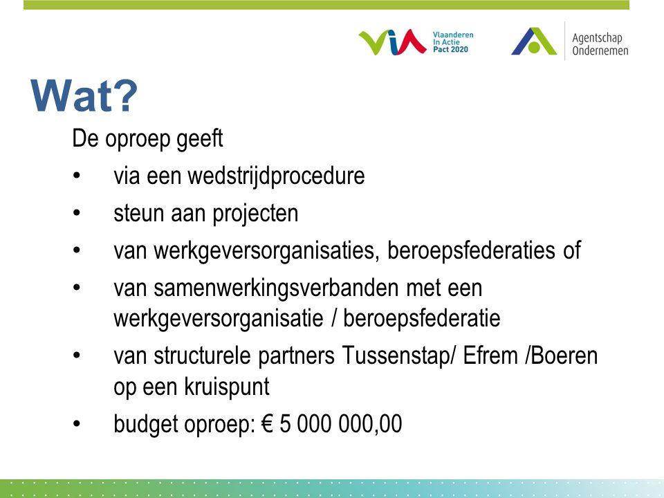 Doelstelling de voorstellen in het project moeten additioneel zijn aan: het reeds bestaande aanbod van tools, diensten en instrumenten van de Vlaamse en Federale overheid (vb.