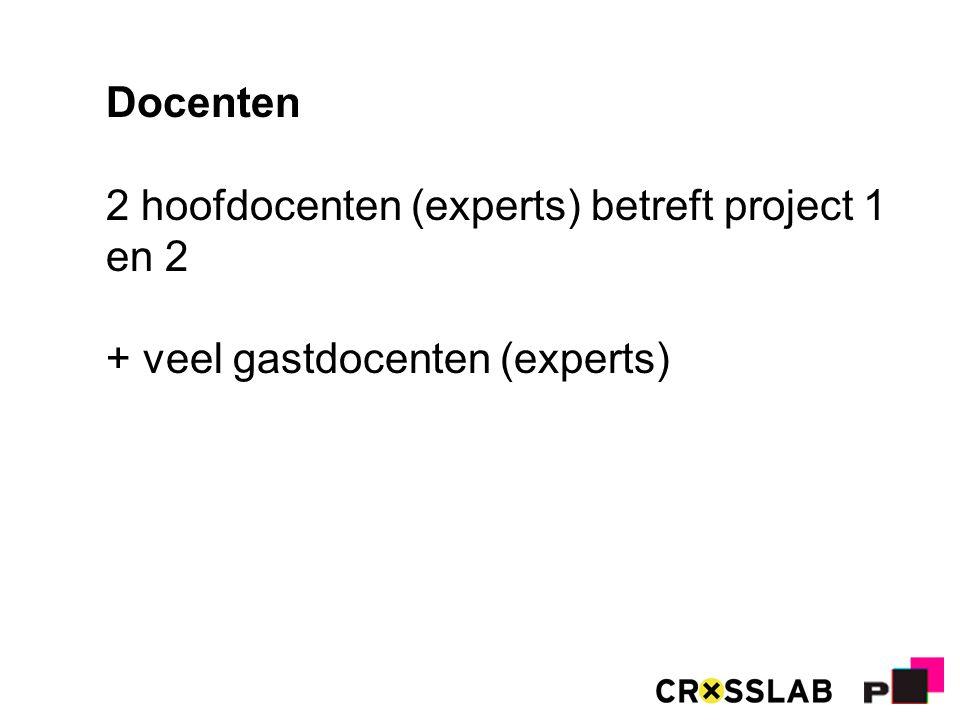 Docenten 2 hoofdocenten (experts) betreft project 1 en 2 + veel gastdocenten (experts)