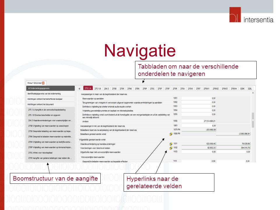 Navigatie Tabbladen om naar de verschillende onderdelen te navigeren Boomstructuur van de aangifte Hyperlinks naar de gerelateerde velden