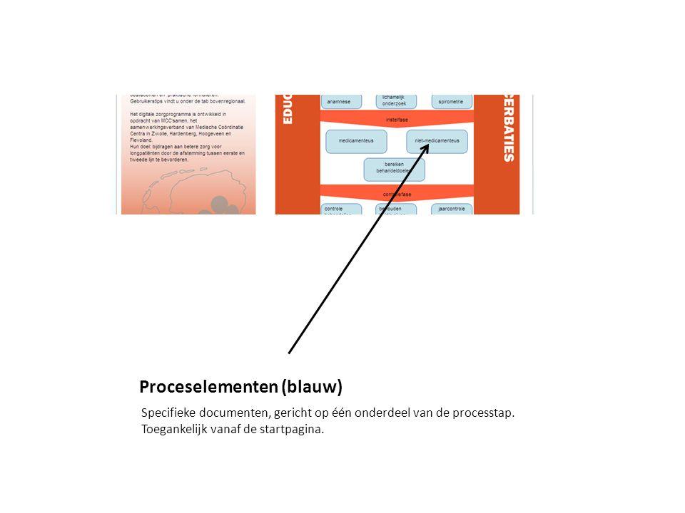 Proceselementen (blauw) Specifieke documenten, gericht op één onderdeel van de processtap.
