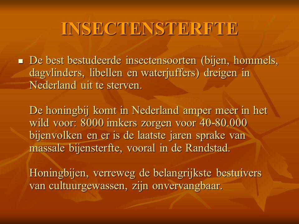 INSECTENSTERFTE De best bestudeerde insectensoorten (bijen, hommels, dagvlinders, libellen en waterjuffers) dreigen in Nederland uit te sterven. De ho