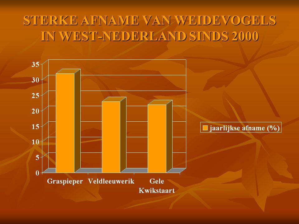 STERKE AFNAME VAN WEIDEVOGELS IN WEST-NEDERLAND SINDS 2000