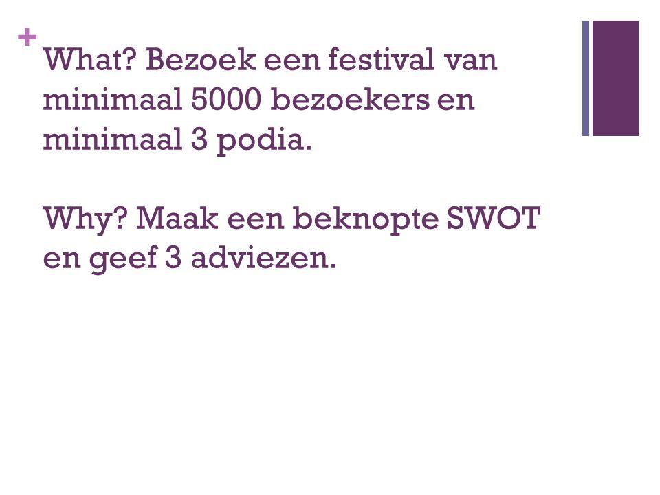 + What? Bezoek een festival van minimaal 5000 bezoekers en minimaal 3 podia. Why? Maak een beknopte SWOT en geef 3 adviezen.