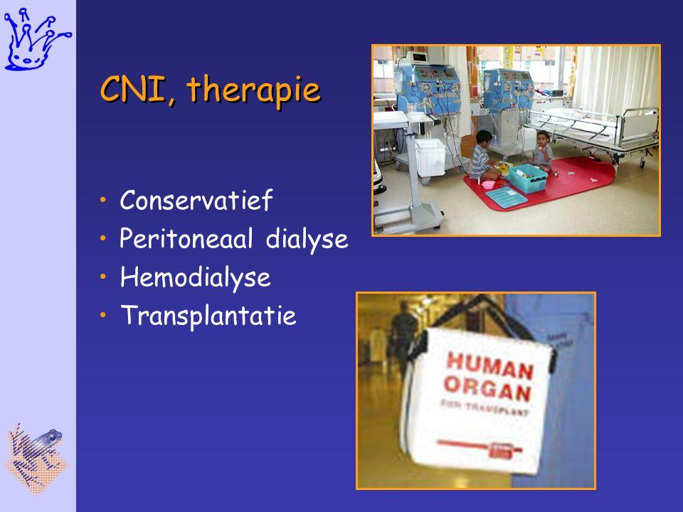 CNI, therapie Conservatief Peritoneaal dialyse Hemodialyse Transplantatie