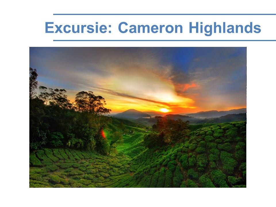 Excursie: Cameron Highlands
