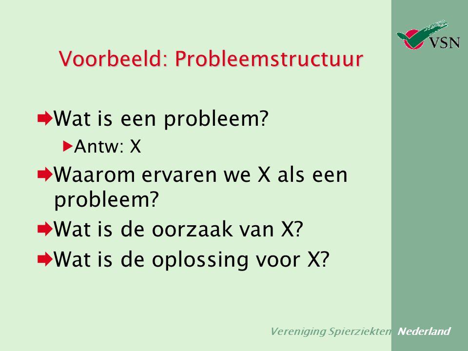 Vereniging Spierziekten Nederland Voorbeeld: Probleemstructuur  Wat is een probleem?  Antw: X  Waarom ervaren we X als een probleem?  Wat is de oo