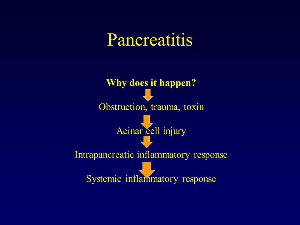 Buizenstelsel van lever, gal en pancreas