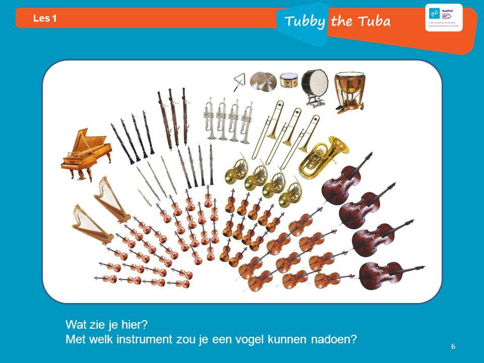 6 Wat zie je hier Met welk instrument zou je een vogel kunnen nadoen Les 1