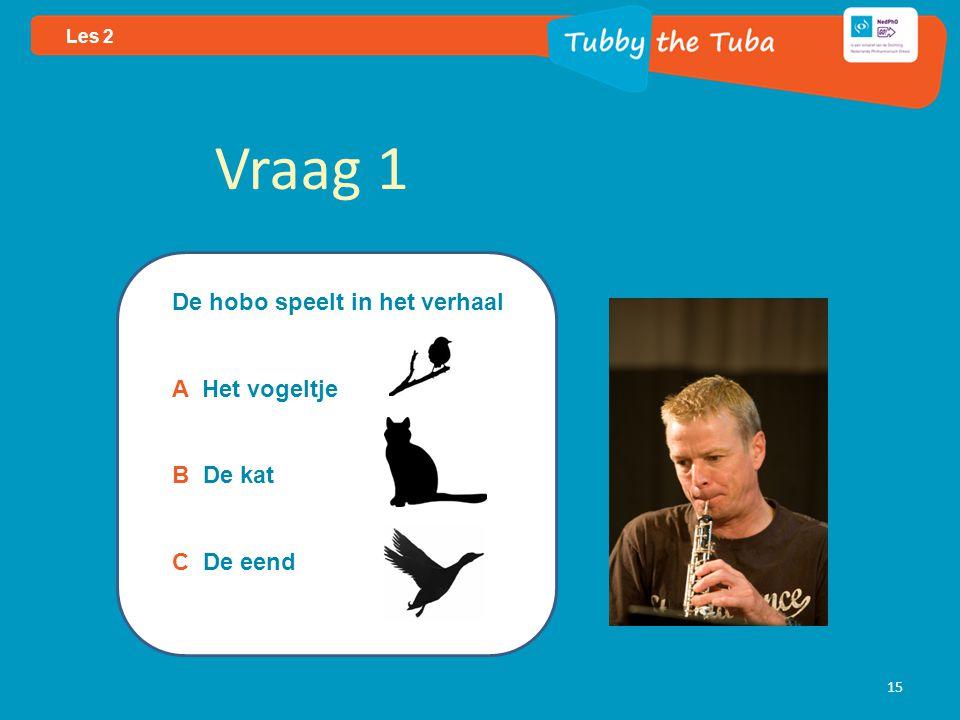 15 Les 2 Vraag 1 De hobo speelt in het verhaal A Het vogeltje B De kat C De eend