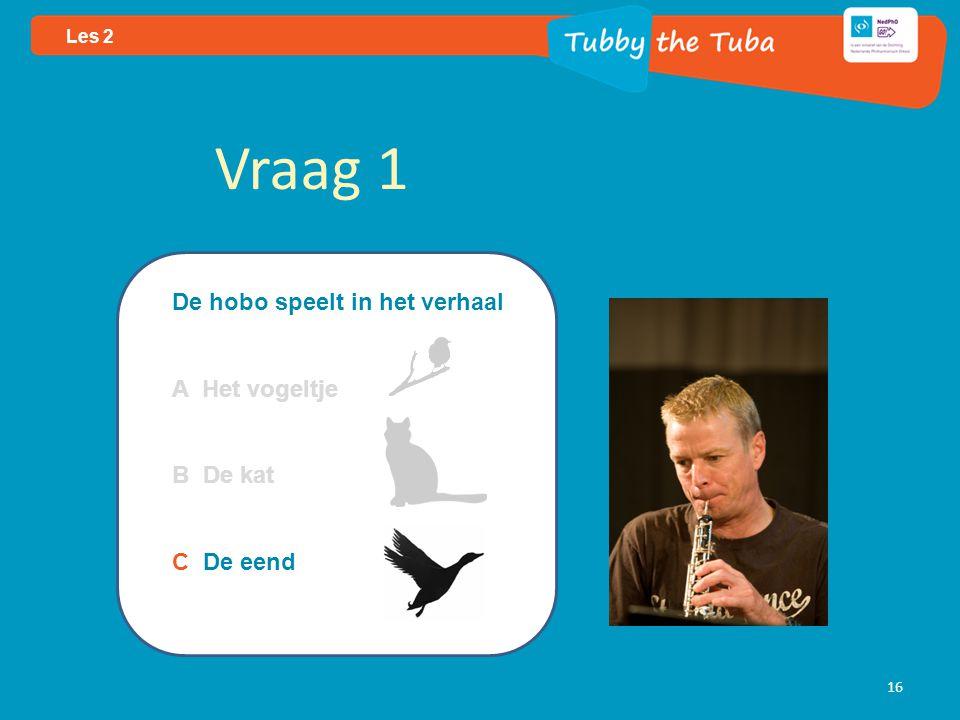 16 Les 2 Vraag 1 De hobo speelt in het verhaal A Het vogeltje B De kat C De eend