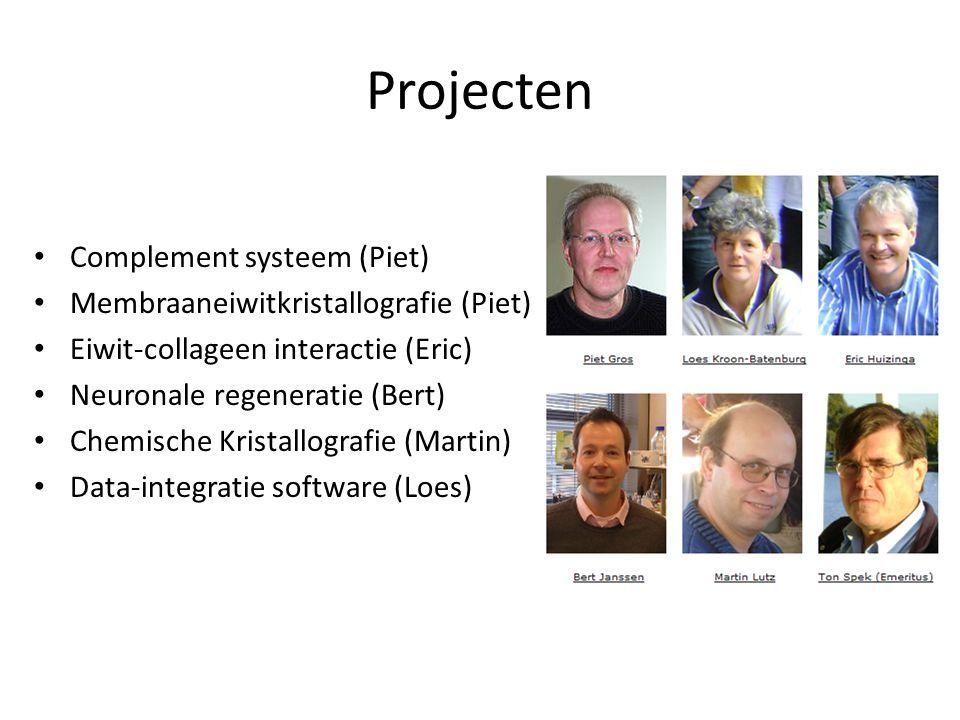 Projecten Complement systeem (Piet) Membraaneiwitkristallografie (Piet) Eiwit-collageen interactie (Eric) Neuronale regeneratie (Bert) Chemische Krist