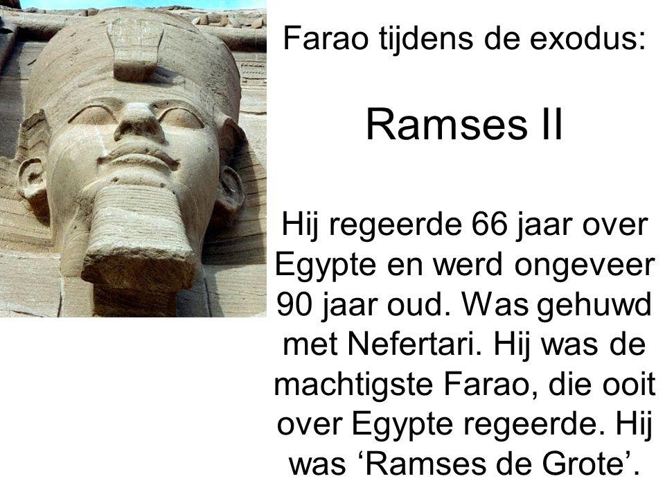 Farao tijdens de exodus: Ramses II Hij regeerde 66 jaar over Egypte en werd ongeveer 90 jaar oud. Was gehuwd met Nefertari. Hij was de machtigste Fara