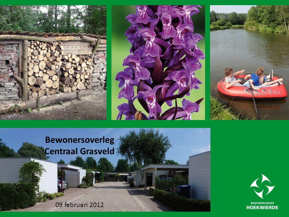 Ideehouder: Bewonersvereniging de Uithoek (bungalows) Locatie in de Wierden: Centrale grasveld.