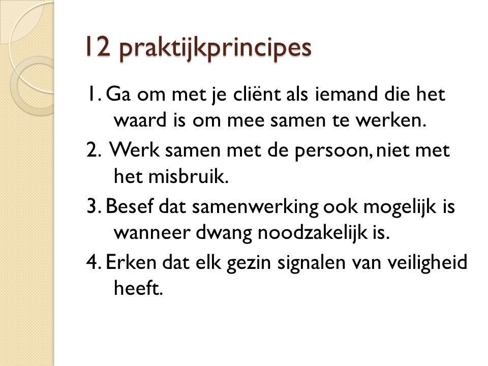 12 praktijkprincipes 1. Ga om met je cliënt als iemand die het waard is om mee samen te werken. 2. Werk samen met de persoon, niet met het misbruik. 3