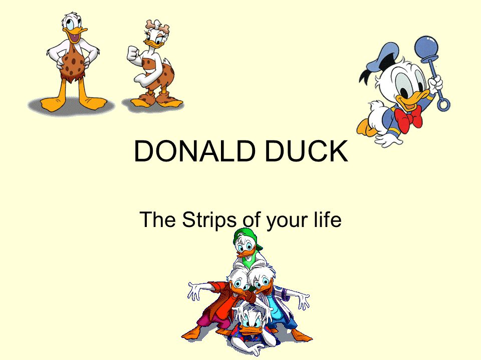 DONALD DUCK The Strips of your life