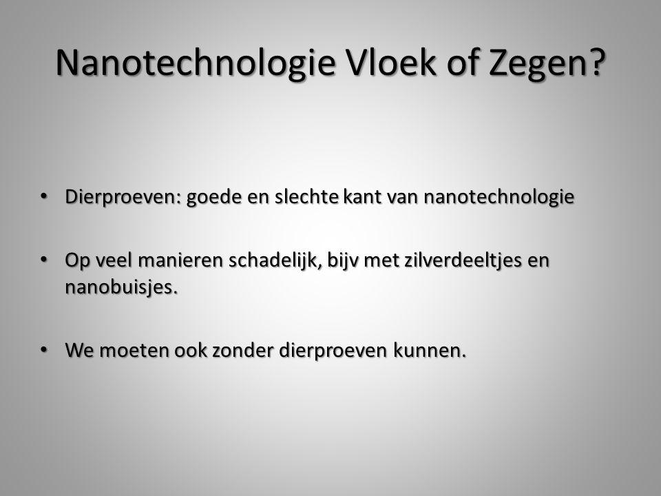 Nanotechnologie Vloek of Zegen.