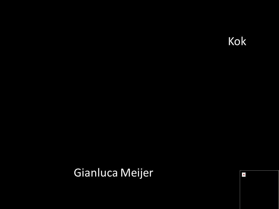 Gianluca Meijer Kok