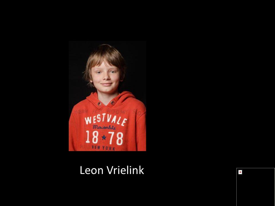 Leon Vrielink