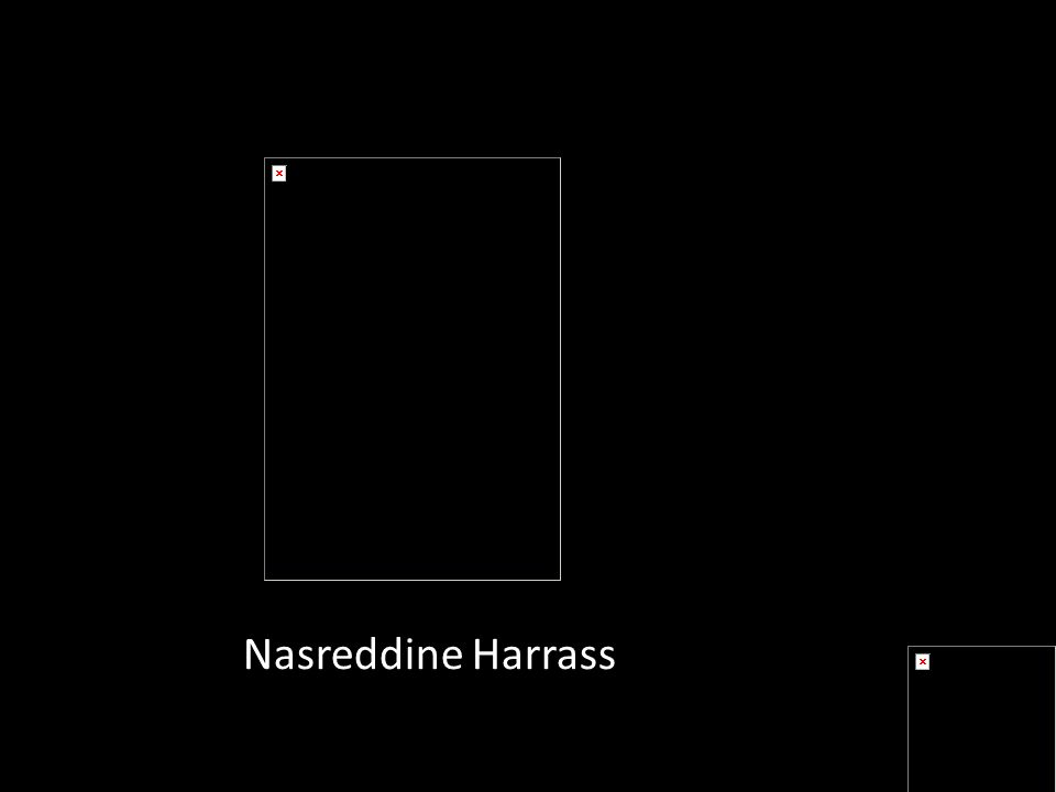Nasreddine Harrass