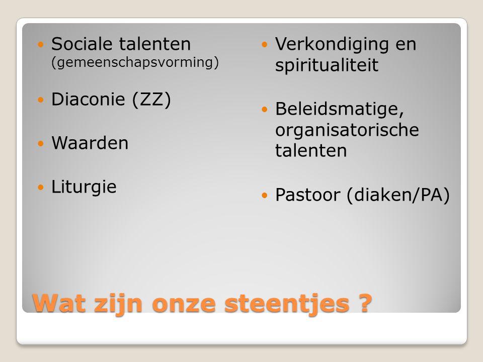 Wat zijn onze steentjes ? Sociale talenten (gemeenschapsvorming) Diaconie (ZZ) Waarden Liturgie Verkondiging en spiritualiteit Beleidsmatige, organisa